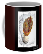 Vintage Shaving Brush Coffee Mug
