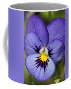 Viola Named Sorbet Blue Heaven Jump-up Coffee Mug by J McCombie