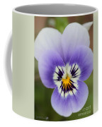 Viola Named Sorbet Marina Baby Face Coffee Mug by J McCombie