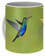 Violet-bellied Hummingbird Coffee Mug