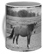 Violet Coffee Mug