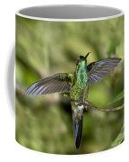 Violet-fronted Brilliant Coffee Mug