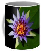 Violet Lily Coffee Mug