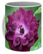 Violet Rose And Buds Coffee Mug