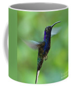 Violet Sabrewing Hummingbird Coffee Mug