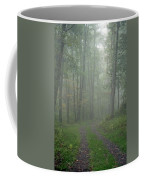 Virginia - Shenandoah National Park - Road Not Taken Coffee Mug