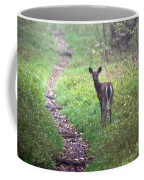 Virginia - Shenandoah National Park - White Tailed Deer Coffee Mug