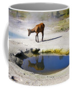 Visitor At West Thumb Basin Coffee Mug