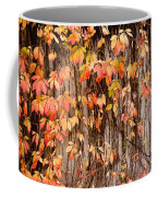 Vitaceae Family Ivy Wall Abstract Coffee Mug