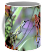 Vitality Of A Hummingbird Coffee Mug