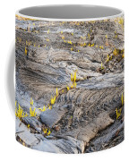 Volcano Regeneration Coffee Mug