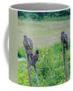 Vulture Fence Line 3 Coffee Mug