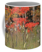 Wachusett Meadows 4 Coffee Mug