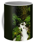 Wahkeena Creek Coffee Mug