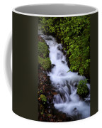 Wahkeena Falls In Oregon Coffee Mug