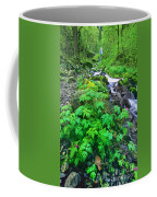 Wahkeena Falls In The Columbia River Gorge Coffee Mug