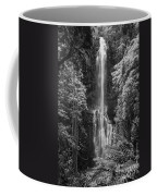 Wailua Falls 2 Coffee Mug