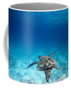 Turtle Soar Coffee Mug