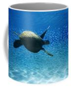 Waimea Turtle Coffee Mug