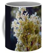 Waiting For Spring - Ice Storm - Closeup Coffee Mug