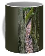 Walk Among The Trees Coffee Mug