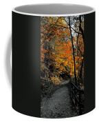 Walk In Golden Fall Coffee Mug