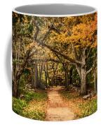 Walk In The Woods Coffee Mug by Jeff Folger