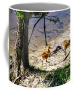 Walking Around The Lake Coffee Mug