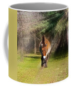 Walking Towards Me In Sunrays Coffee Mug