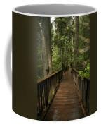 Walkway Into Paradise Coffee Mug