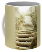 Walkway To Beach Coffee Mug