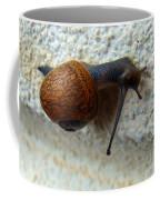 Wall Snail 1 Coffee Mug