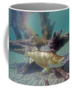 Walleye Pike And Dardevle Coffee Mug