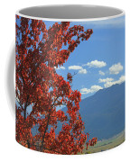 Dn5930-wallowa Valley In Fall Coffee Mug