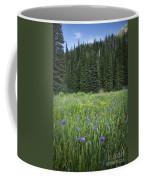 Wallowa Wildflowers Coffee Mug