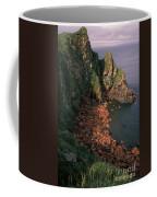 Walrus Haul-out, Alaska Coffee Mug