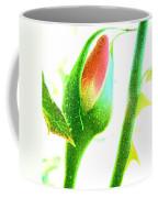 Wandering Rose Garden Coffee Mug