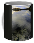 Wanigan View Below Above And Beyond Coffee Mug