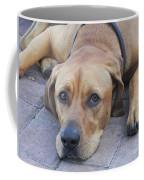 Want To Play  Coffee Mug