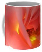 Warm Glow Pink Rose 2 Coffee Mug