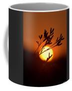 Warm Summer's Morn 2013 Coffee Mug