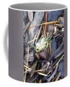 Washed Ashore Coffee Mug