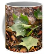 Washed Up Leaves Coffee Mug
