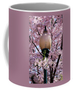 Washington Cherry Blossoms And A Lantern Coffee Mug