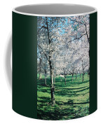 Washington Dc Cherry Blossoms Coffee Mug