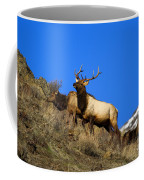 Watchful Bull Coffee Mug