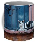 Watchful Cat, Mexico Coffee Mug