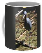 Watchful Little Blue Heron  Coffee Mug