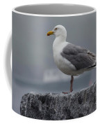 Watchful Seagull Coffee Mug