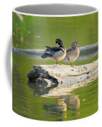 Watchful Woodducks Coffee Mug